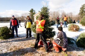 cedar_hill_christmas_tree_farm_6264
