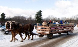 cedar_hill_christmas_tree_farm_71587