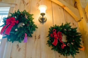 cedar_hill_christmas_tree_farm_91688