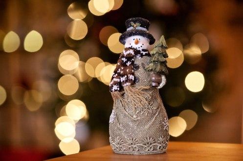 ottawa-christmas-shop-and-decorations_CH_web 022
