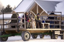 ottawa-christmas-tree-cut-your-own_CH_web 102