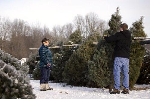 ottawa-christmas-tree-cut-your-own_CH_web 104