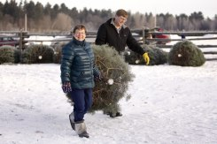 ottawa-christmas-tree-cut-your-own_CH_web 105