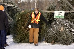 ottawa-christmas-tree-cut-your-own_CH_web 106
