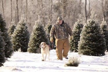 ottawa-christmas-tree-cut-your-own_CH_web 129