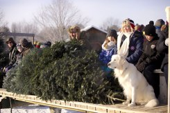 ottawa-christmas-tree-cut-your-own_CH_web 136