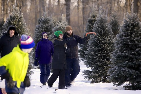 ottawa-christmas-tree-cut-your-own_CH_web 153