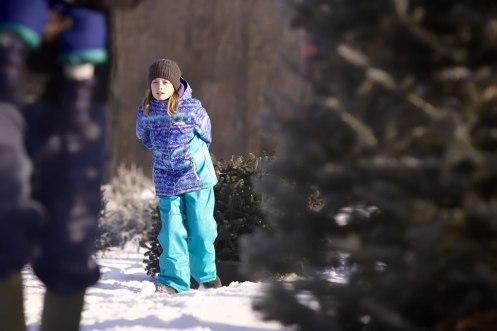 ottawa-christmas-tree-cut-your-own_CH_web 163