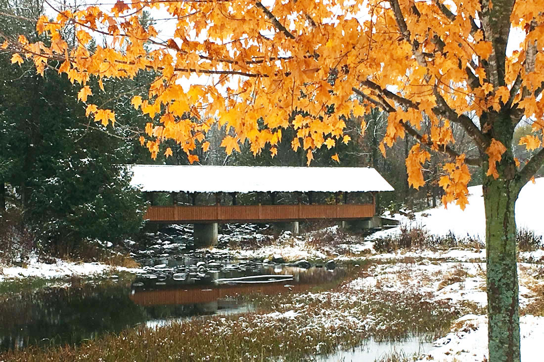 The covered bridge at the Christmas tree farm