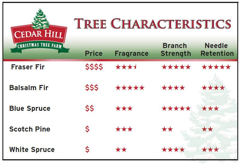 Christmas tree characteristics chart